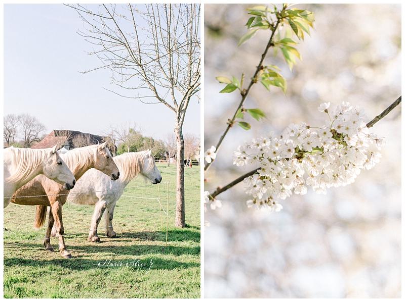 Mariage-champ-delaunay-calvados